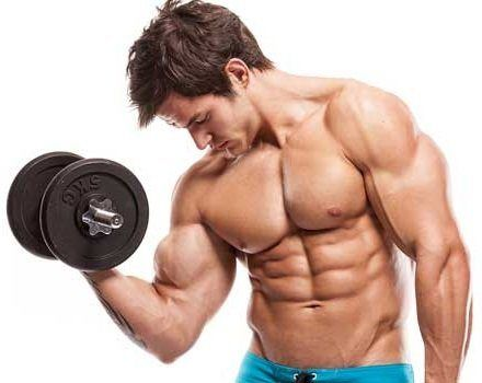 Musculin Active  achat
